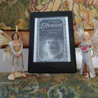 Elfenzeit 6 Die Wandernde Seele - Michael Marcus Thurner