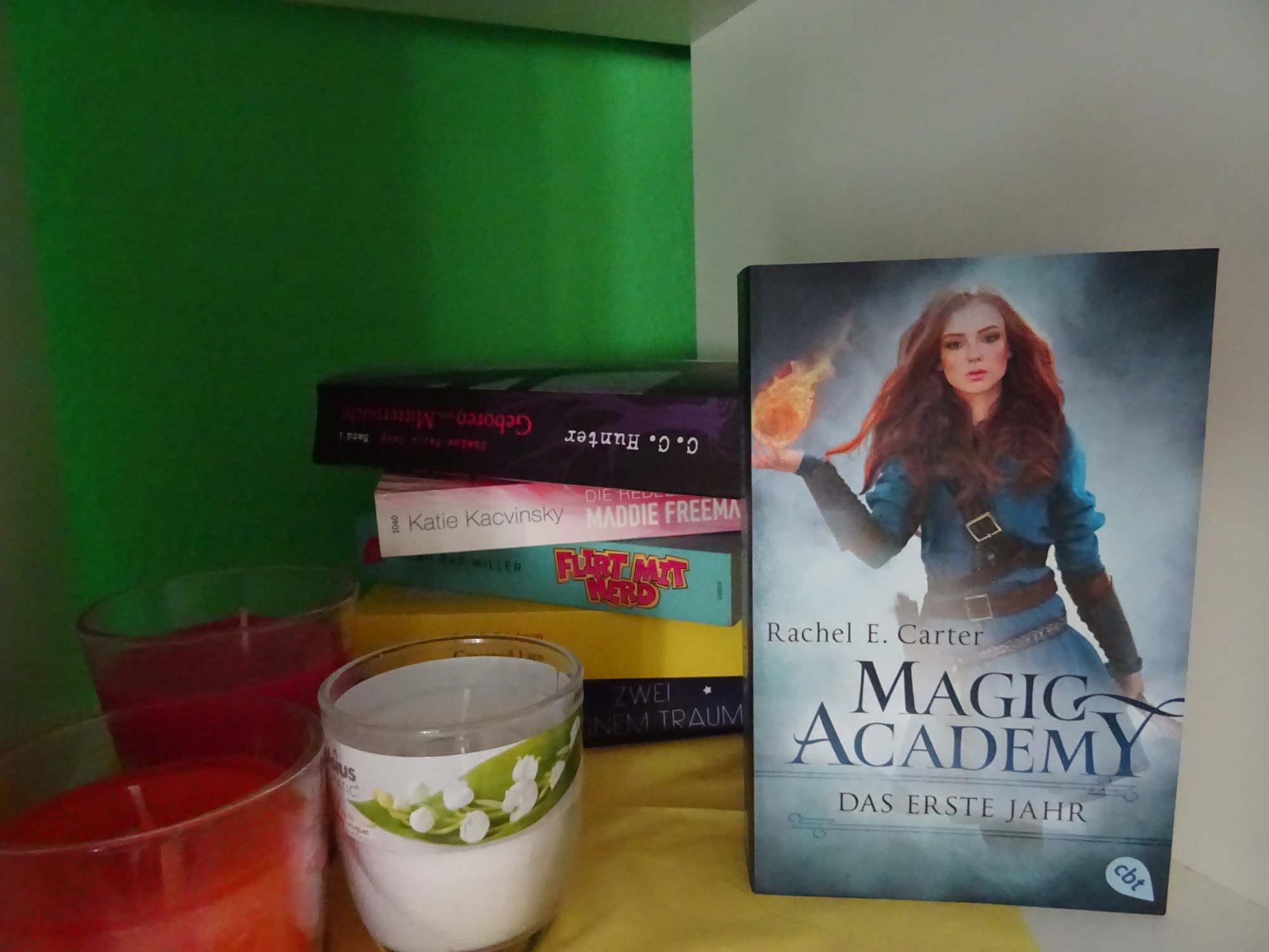 Magic Academy - Das erste Jahr - Rachel E. Carter