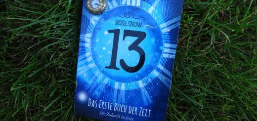13 - Das erste Buch der Zeit - Die Zukunft ist jetzt. - Rose Snow