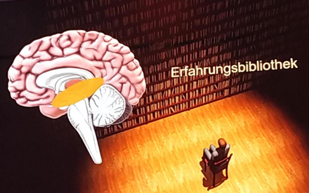 Digital X ~ Erfahrungsbibliothek nach Dr. Volker Busch