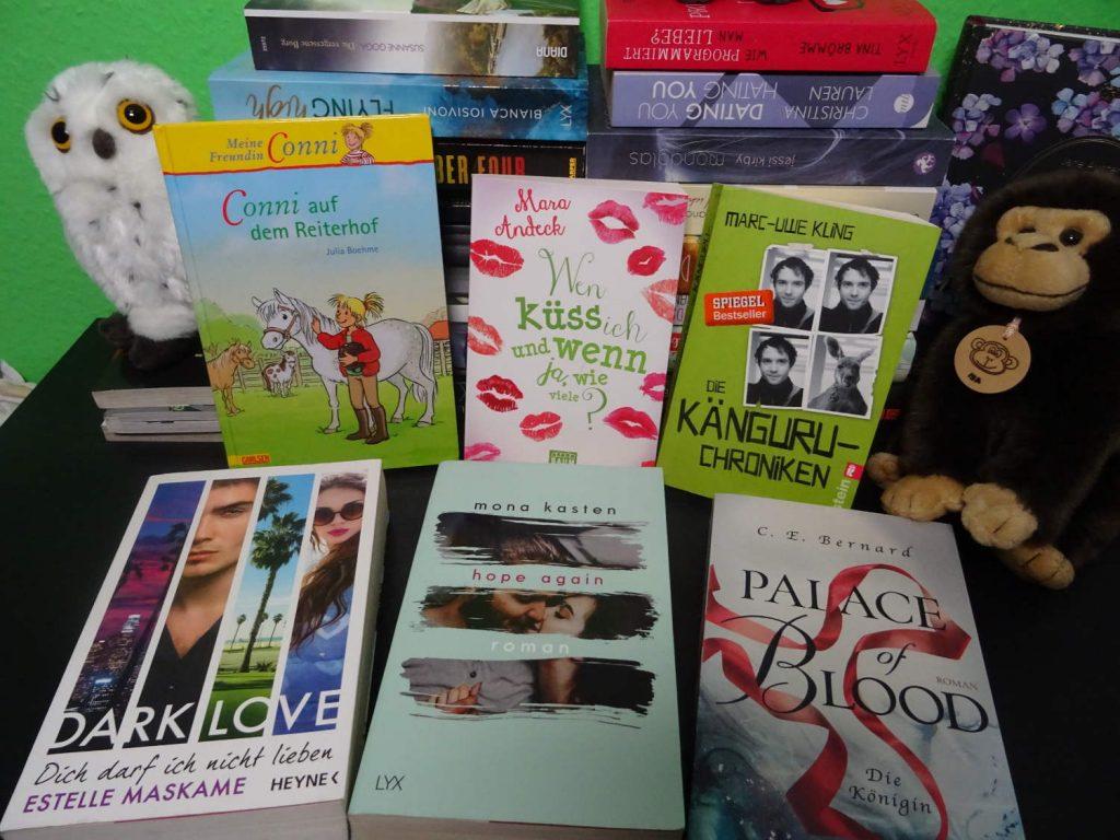 Zischen Eule und Affe sind Bücher zu sehen: Conni auf dem Reiterhof, Wen küss ich und wenn ja wie viele, Die Känguru-Chroniken, Dark Love, Hope Again, Palace of Bloof