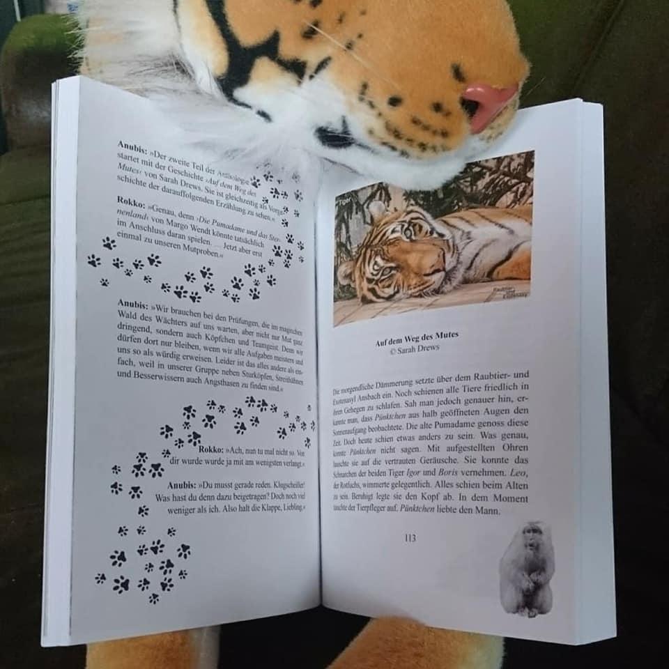 Magischer Tigerwald ~ Shadodex Verlag der Schatten (C)