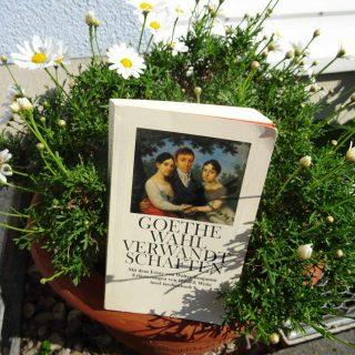 Wahlverwandtschaften ~ Goethe
