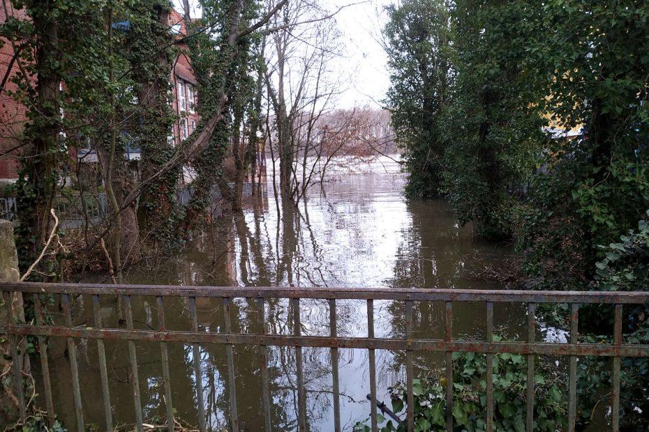 Rhein Hochwasser am 05. Februar 2021 in Bonn Grauhreindorf