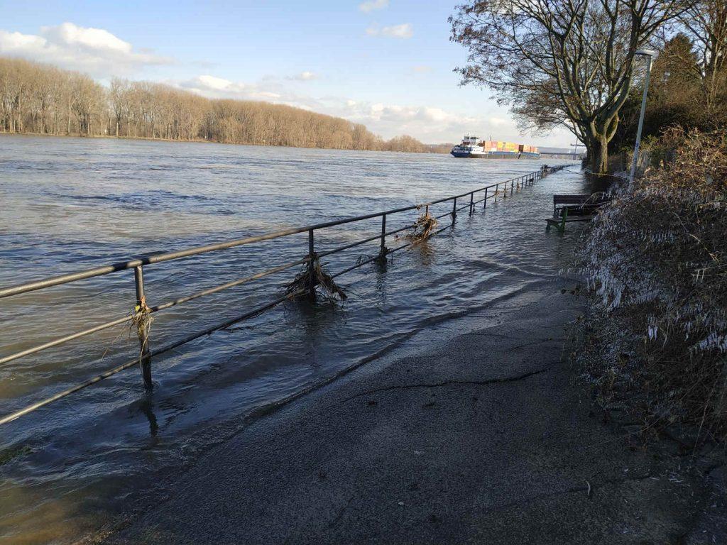 Hochwasser in Bonn am 11.02.2021