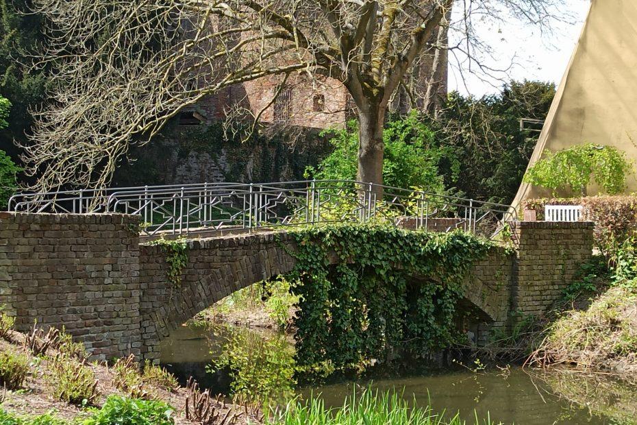 kleine alte Brücke mit Baum