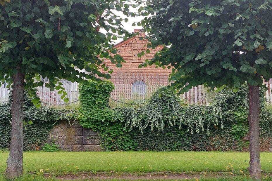 Zwischen zwei Bäumen hindurch sieht man ein altes Ziegelsteingebäude, davor eine bewachsene niedrige Mauer und eine Wiese