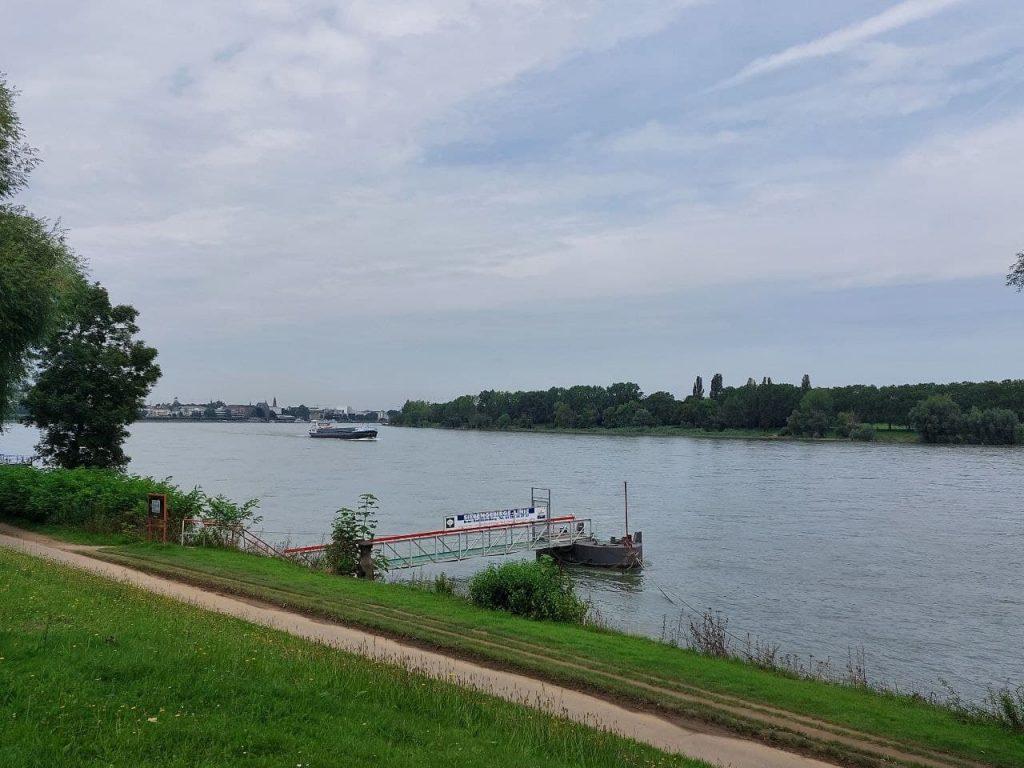Rheinufer in Bonn