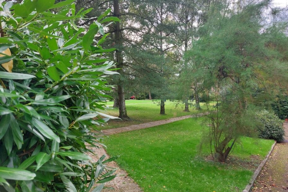 Wiese hinter dem Seminarhaus in Kerpen-Horrem